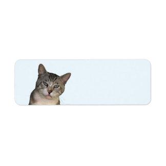 Meece las etiquetas del remite del gato etiqueta de remite