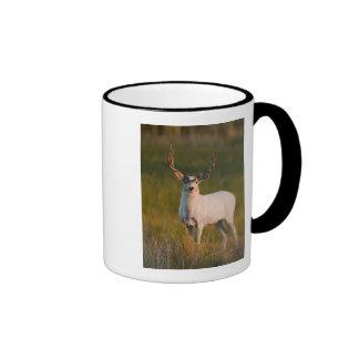 Meeker's White Buck 2 Ringer Coffee Mug