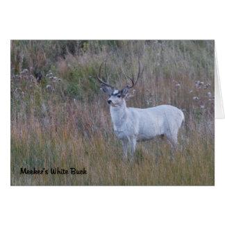Meeker's White Deer 1 Greeting Card