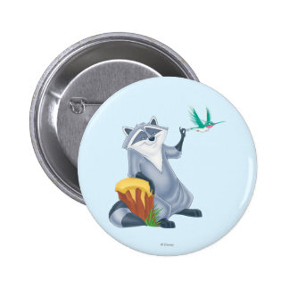 Meeko and Flit Pinback Button