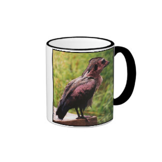 Meeribis mug