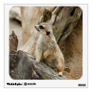 Meerkat 2014-1001 wall decal