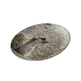 Meerkat adorable 1014A Plato De Cerámica