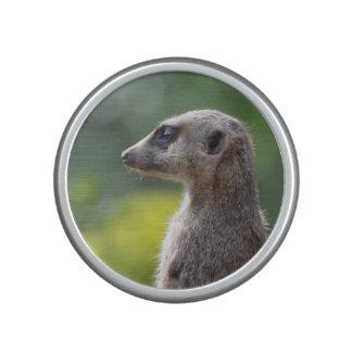 Meerkat adorable altavoz bluetooth