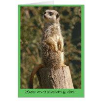 Meerkat Alert Card