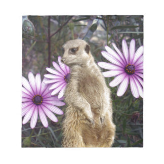 Meerkat_And_Daisies,_ Notepad