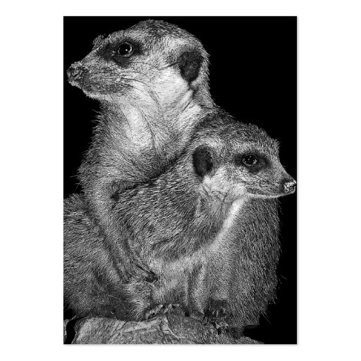 Meerkat and Pup, B & W, Black Back Business Card