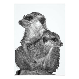 Meerkat and Pup, B & W, White Back 5x7 Paper Invitation Card