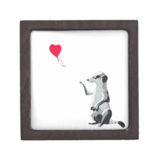 Meerkat and the red balloon gift box