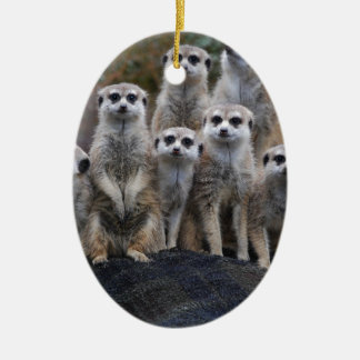 Meerkat Animal Safari Africa Cute Suricate Double-Sided Oval Ceramic Christmas Ornament