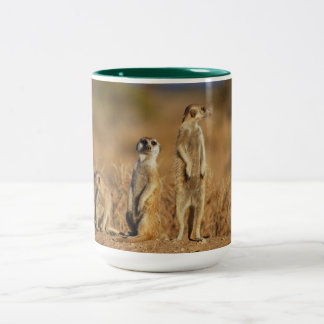 Meerkat Animal Safari Africa Cute Suricate Two-Tone Coffee Mug