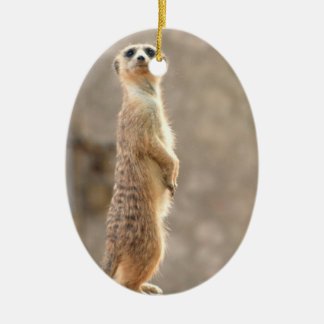 Meerkat at Attention Ornaments