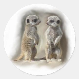 Meerkat baby twins classic round sticker