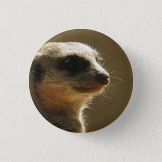 Meerkat Badge Pinback Button