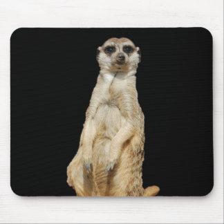 Meerkat Black Background Mouse Pad