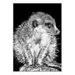 Meerkat, blanco y negro tarjetas de negocios