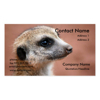 Meerkat Business Card