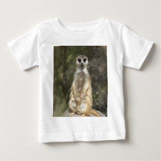 Meerkat Camisas