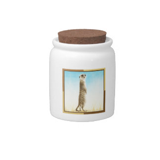 Meerkat Candy Jars
