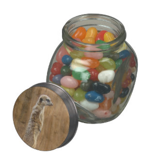 Meerkat Jelly Belly Candy Jars