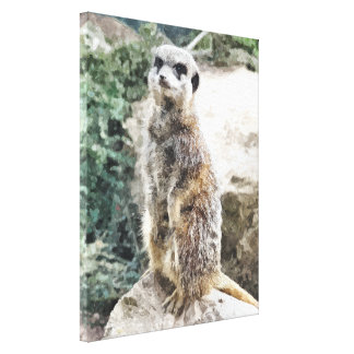 MEERKAT GALLERY WRAPPED CANVAS