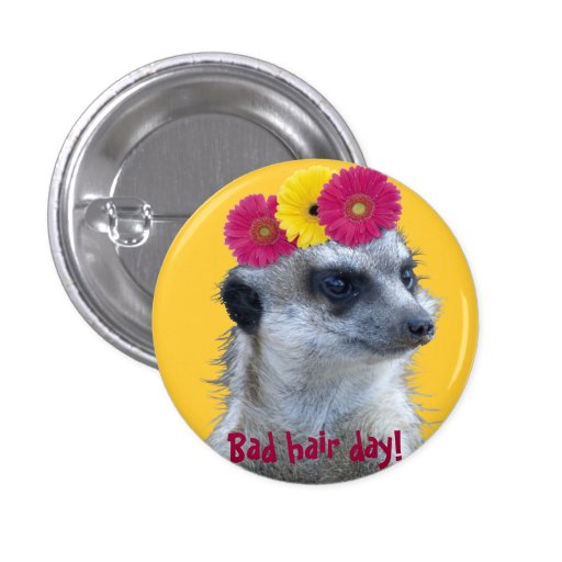 Meerkat con 3 margaritas brillantes del gerber pin