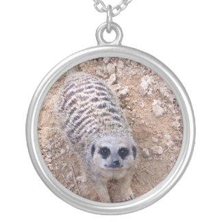 Meerkat contra la arcilla que mira para arriba la  colgante redondo