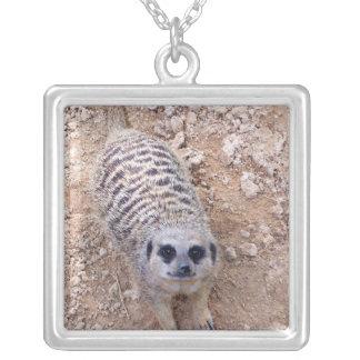 Meerkat contra la arcilla que mira para arriba la pendientes personalizados