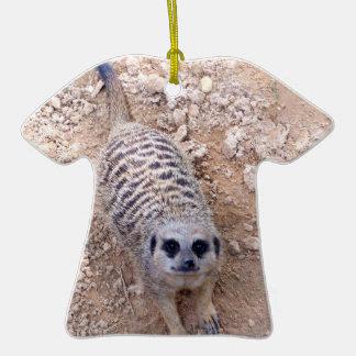 Meerkat contra la arcilla que mira para arriba la adorno de reyes