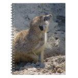 Meerkat Cuaderno