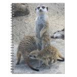 Meerkat Cuadernos