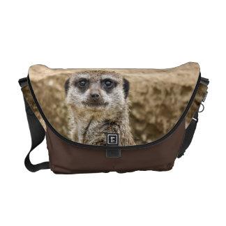 Meerkat curioso bolsa de mensajería