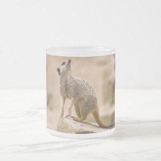 Meerkat Cute Africa Safari Animal Wild Art Frosted Glass Coffee Mug