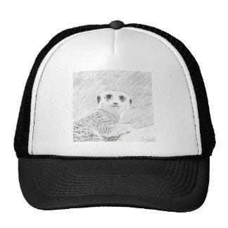 meerkat del bosquejo del lápiz gorra