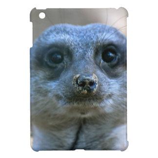 Meerkat divertido iPad mini carcasa