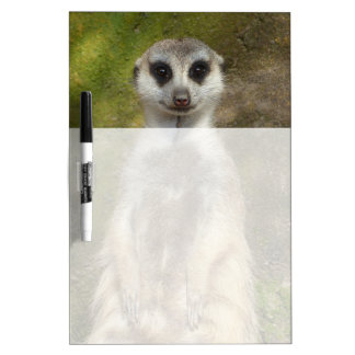 Meerkat Dry-Erase Board