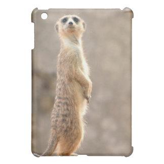 Meerkat en el caso del iPad de la atención