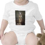 meerkat en el puesto de observación traje de bebé