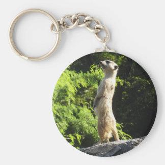 Meerkat- en el reloj llavero
