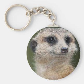 Meerkat en la mirada hacia fuera llavero redondo tipo pin