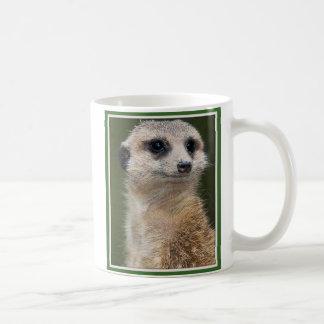 Meerkat en la mirada hacia fuera taza