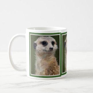 Meerkat en la mirada hacia fuera taza clásica