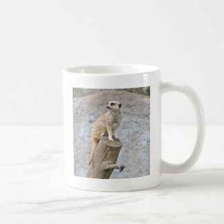 Meerkat en un registro tazas de café