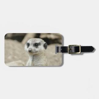 Meerkat Etiqueta De Equipaje