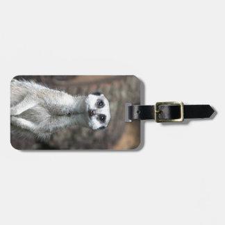 Meerkat Etiquetas Para Equipaje