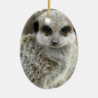 Meerkat Face Ornament
