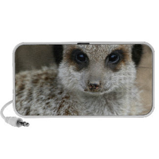 Meerkat Face Portable Speakers