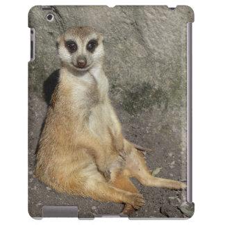 Meerkat Funda Para iPad