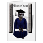 Meerkat Graduate W/ Blue Gown & Diploma Card