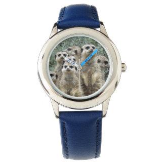 Meerkat-Grupo 001 Reloj De Mano